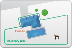 elektryczne ogrodzenie dla psa